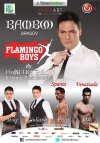 Flamingo Boys in Bamboo club din Brasov