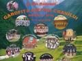 Festivalul International al Artelor din Tarile Vecine Romaniei si din Balcani Garofita Pietrei Craiului, editia a II-a